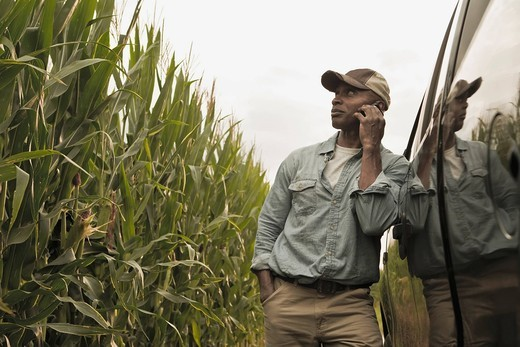 African American farmer talking on cell phone in field : Stock Photo