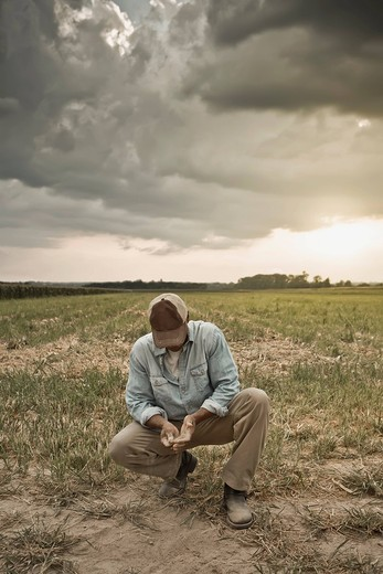 African American farmer checking dirt in field : Stock Photo