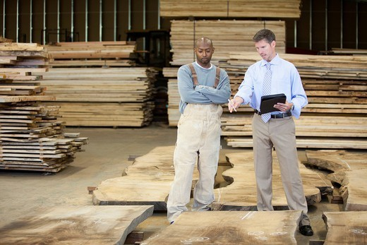 Co_workers taking about lumber in warehouse : Stock Photo