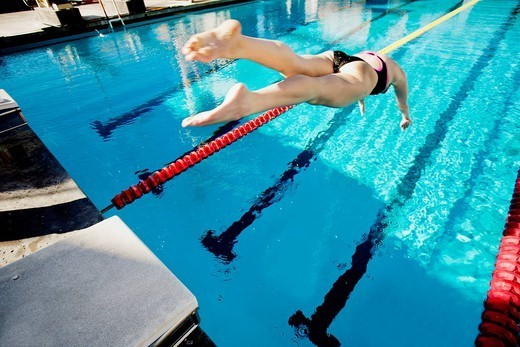 Competitive swimmer diving into swimming pool : Stock Photo