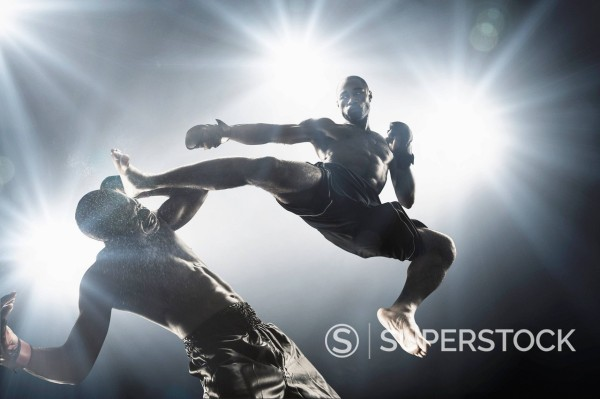 Stock Photo: 1589-170728 African American MMA fighters fighting