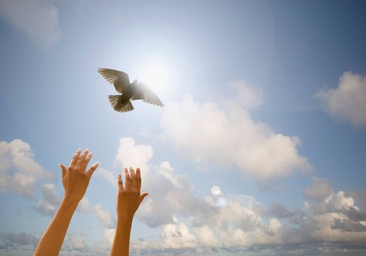 Bird flying free from womanÕs hands : Stock Photo