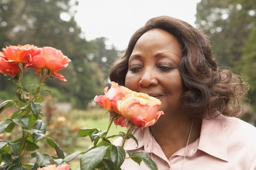 Middle_aged African woman smelling roses outdoors : Stock Photo