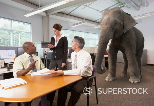 Stock Photo: 1589-74033 Business people having meeting with elephant in the room