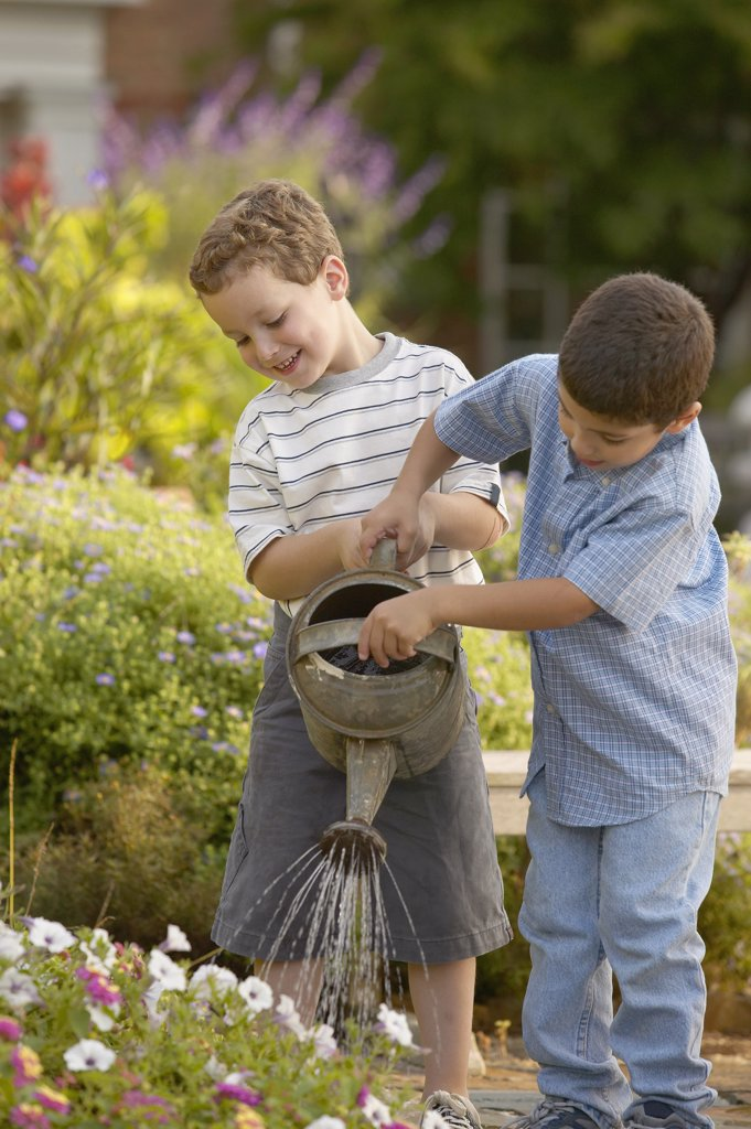 Two boys watering plants : Stock Photo