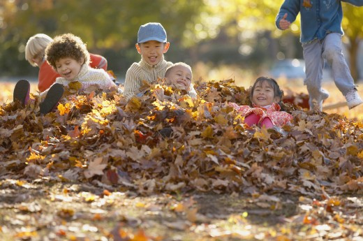 Stock Photo: 1589R-01959 Group of children playing with dry leaves