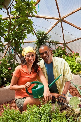 Woman and man with watering can in greenhouse : Stock Photo