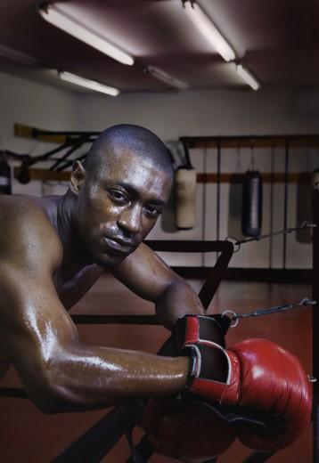 Male boxer resting : Stock Photo
