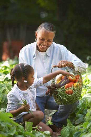 Stock Photo: 1589R-13744 Girl and woman with vegetable basket