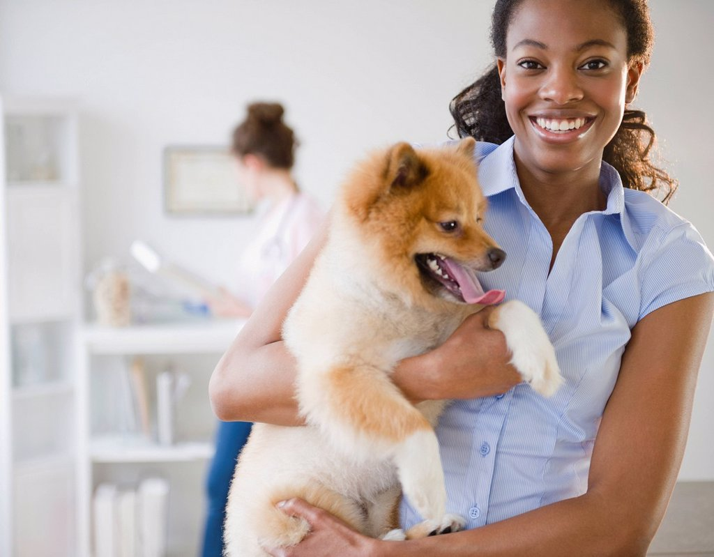 Stock Photo: 1589R-145604 Mixed race woman holding Pomeranian dog