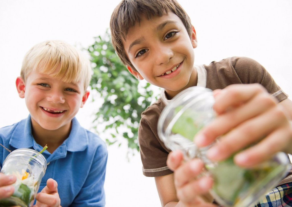 Stock Photo: 1589R-153064 Boys holding jars catching bugs