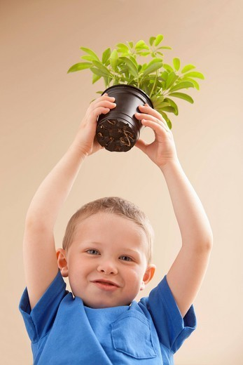 Caucasian boy holding potted plant : Stock Photo
