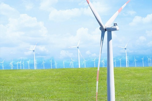 Wind farm in field : Stock Photo