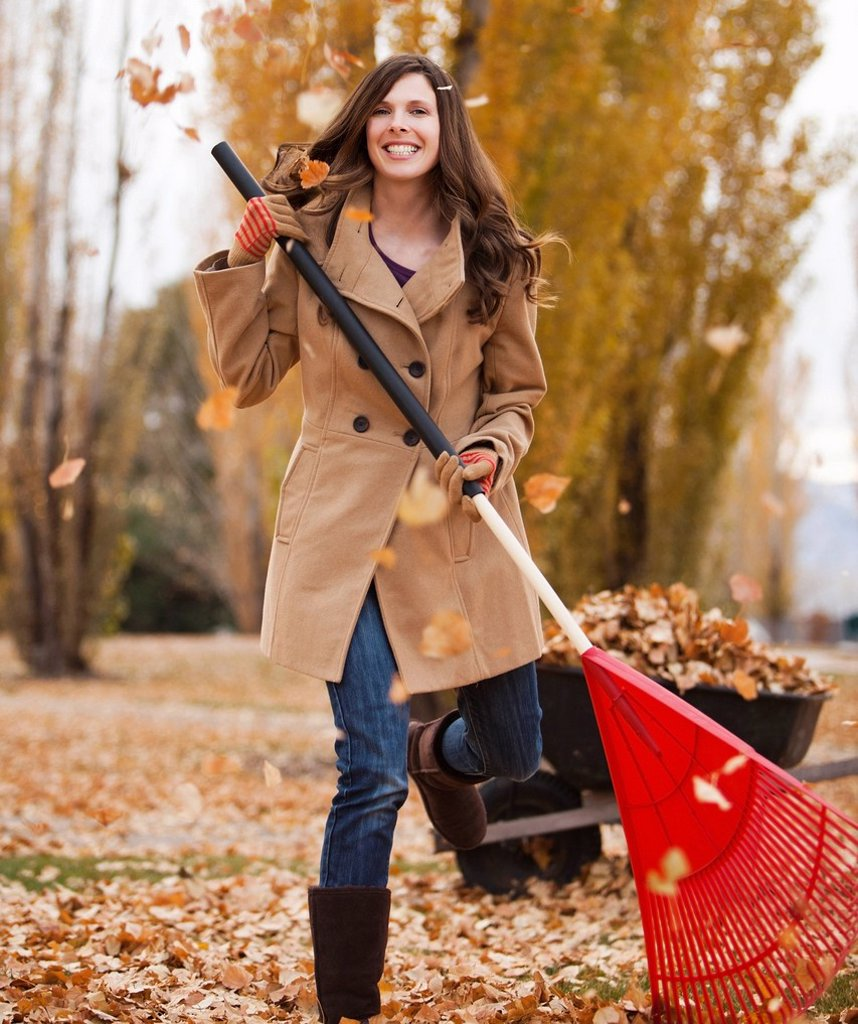 Stock Photo: 1589R-159254 Caucasian woman raking autumn leaves