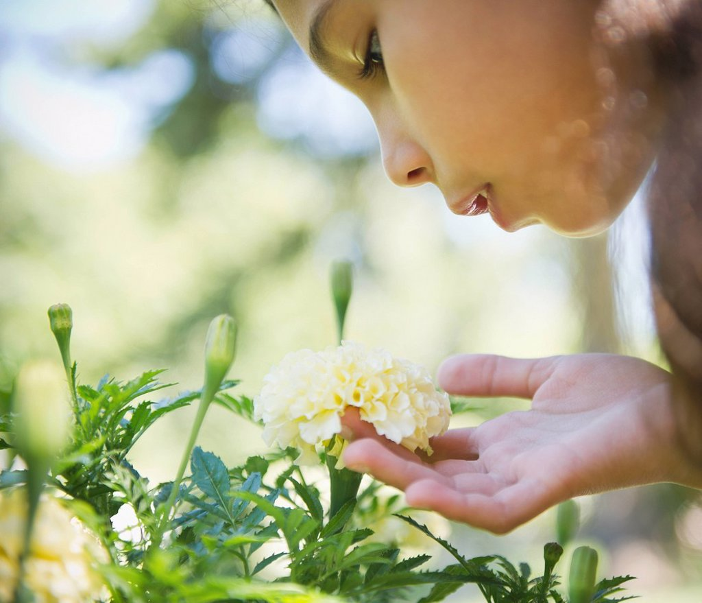 Hispanic girl smelling flower : Stock Photo