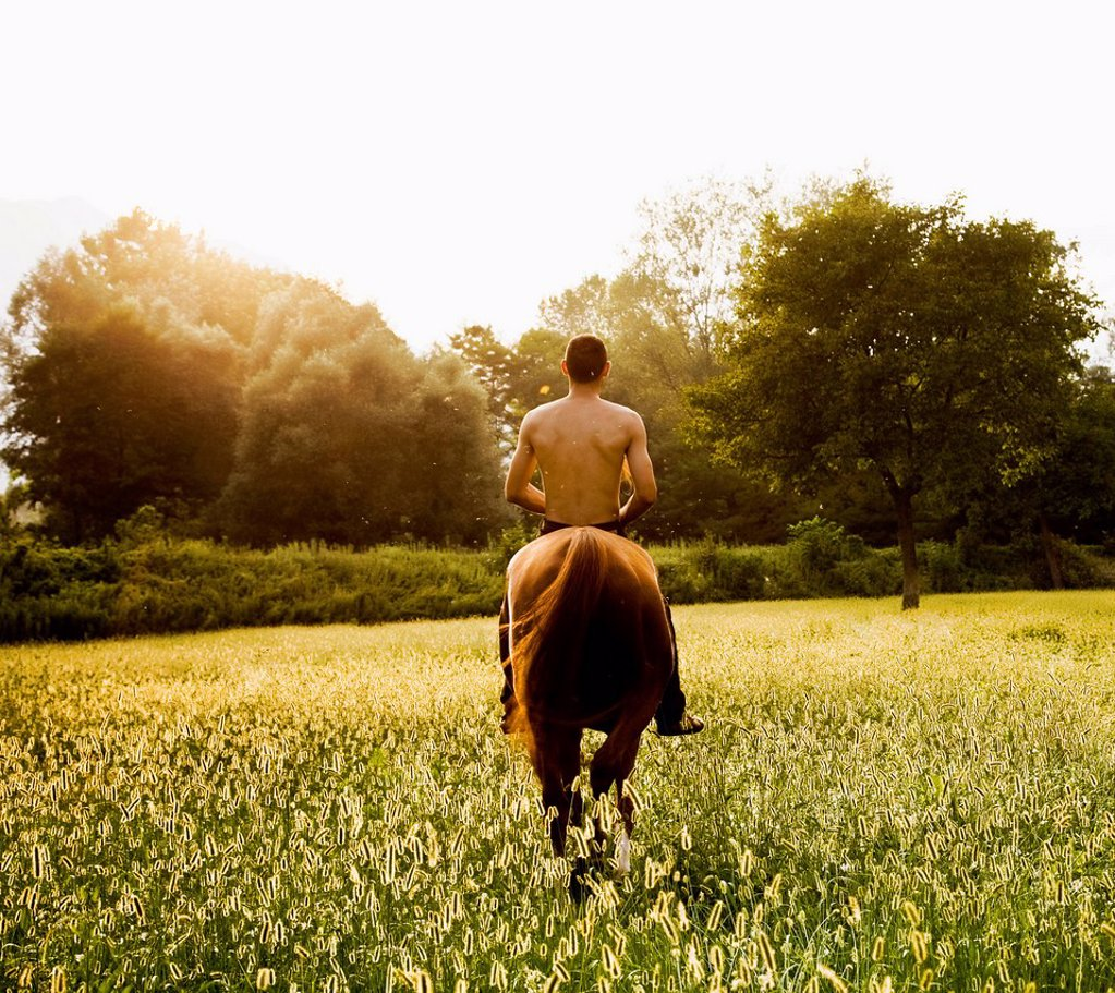 Stock Photo: 1589R-165636 Caucasian man riding horse in field