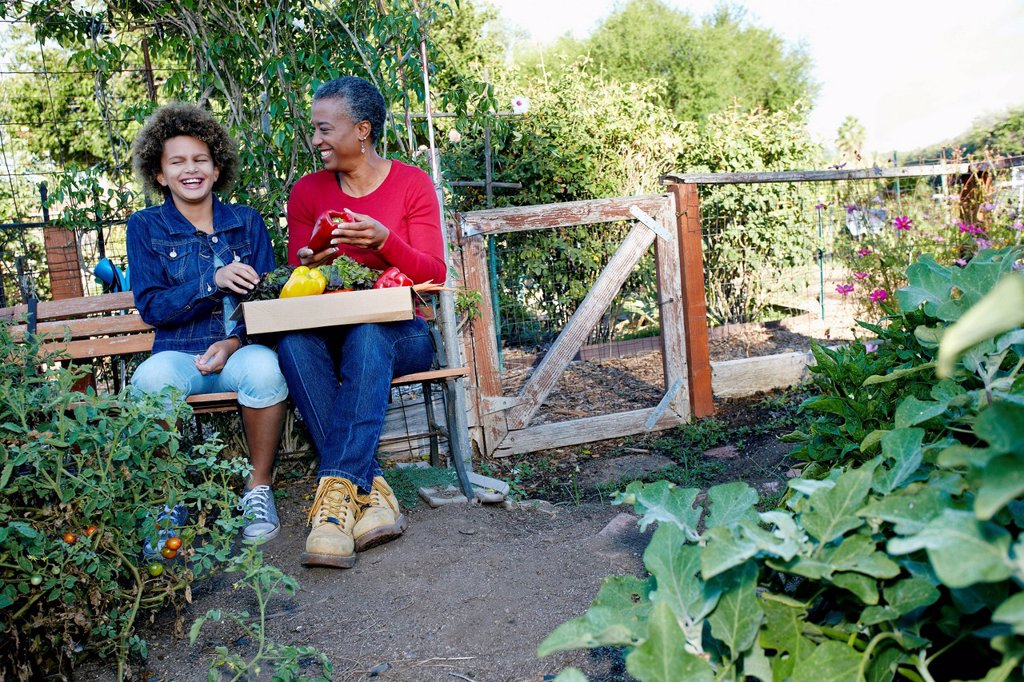 Stock Photo: 1589R-167783 Mother and daughter gathering vegetables in community garden