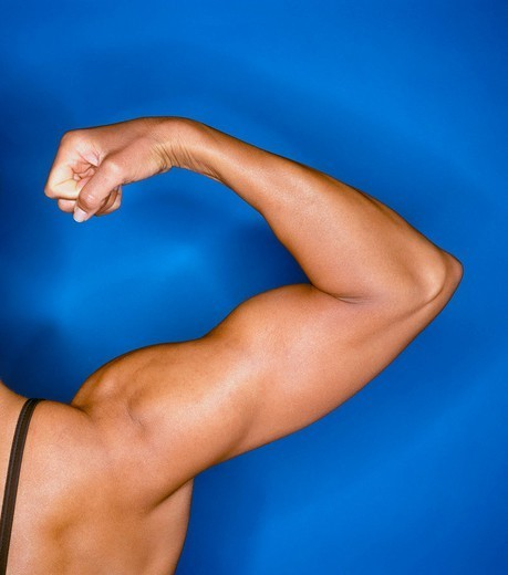 Bodybuilder´s flexed right arm : Stock Photo