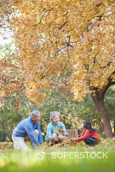 Chinese couple throwing autumn leaves with granddaughter : Stock Photo
