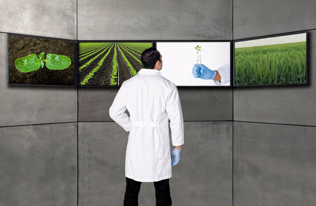 Stock Photo: 1589R-171140 Hispanic scientist looking at images on television screens