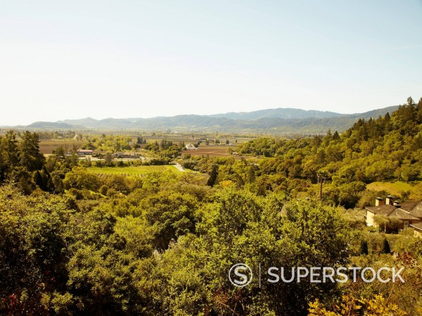 Stock Photo: 1589R-171187 Expansive view of wine country in Napa Valley, California