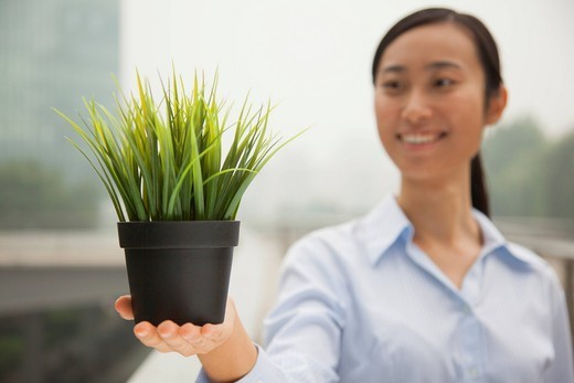 Chinese businesswoman holding potted plant : Stock Photo