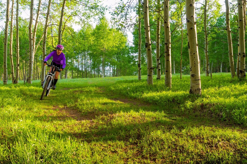 Hispanic teenager riding bicycle in woods : Stock Photo