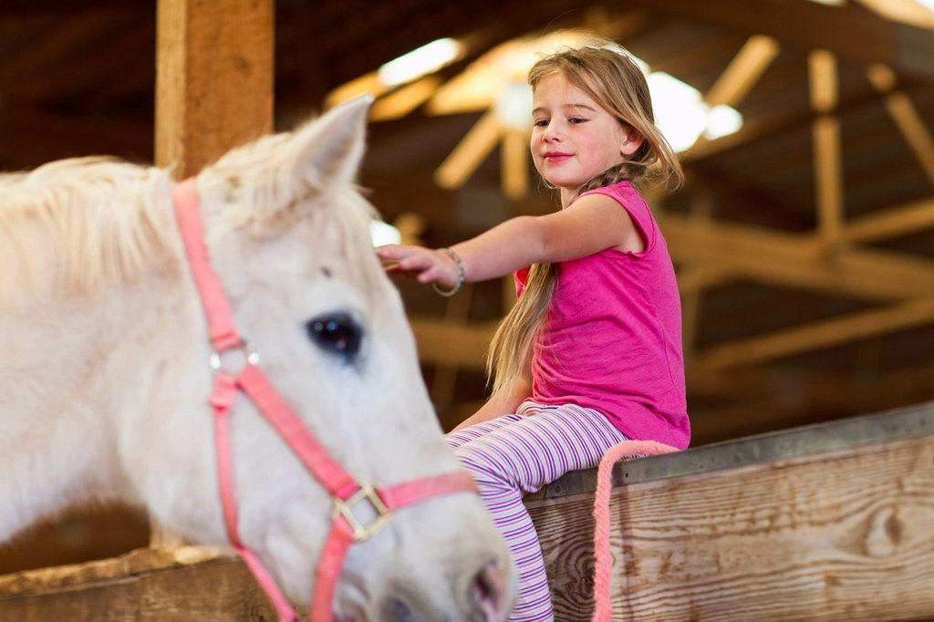 Caucasian girl petting horse in barn : Stock Photo