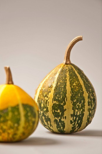 Stock Photo: 1589R-171963 Green and yellow gourd vegetables