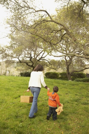 Stock Photo: 1589R-27148 Mother and young son with picnic basket in park