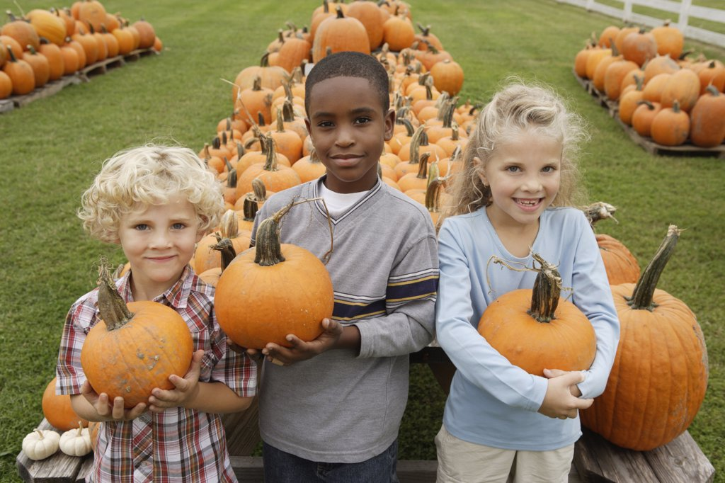 Portrait of children holding pumpkins : Stock Photo