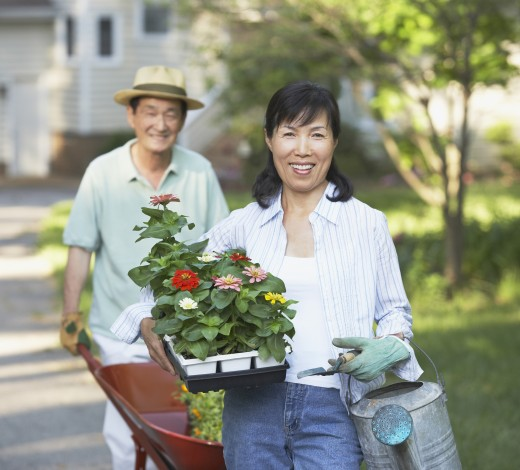 Senior Asian couple gardening : Stock Photo