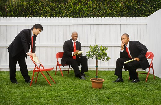 Multi-ethnic businessmen looking at tree : Stock Photo