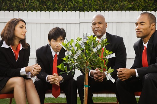 Stock Photo: 1589R-44293 Multi-ethnic businesspeople looking at money tree