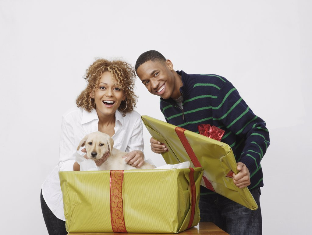 Stock Photo: 1589R-59627 African man surprising girlfriend with puppy