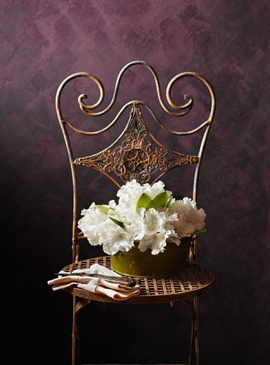 Stock Photo: 1589R-70744 Bouquet of rhododendron flowers on chair