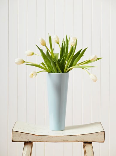 Stock Photo: 1589R-70749 Bouquet of tulips in vase on bench