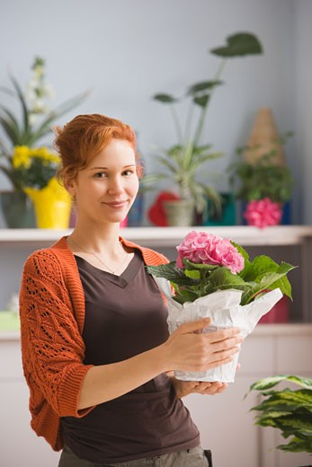 Hispanic woman holding potted plant in florist shop : Stock Photo