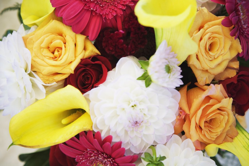 Stock Photo: 1589R-72070 Close up of flower bouquet