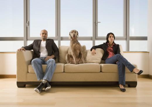 Multi-ethnic couple and dog sitting on sofa : Stock Photo