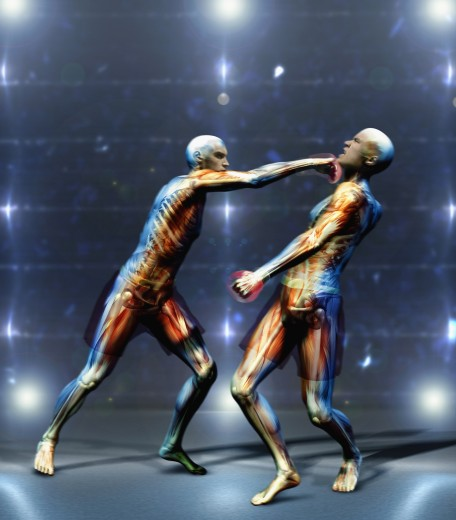 Multi-ethnic anatomical men boxing : Stock Photo