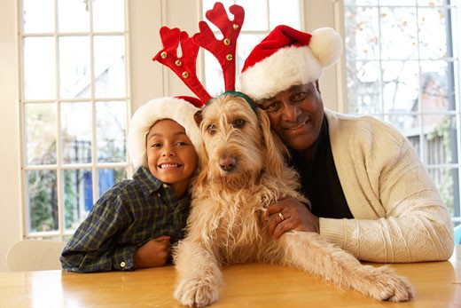 African grandfather and grandson wearing Santa hats and dog in antlers : Stock Photo