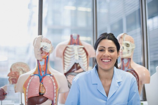 Hispanic scientist sitting in laboratory with anatomical models : Stock Photo