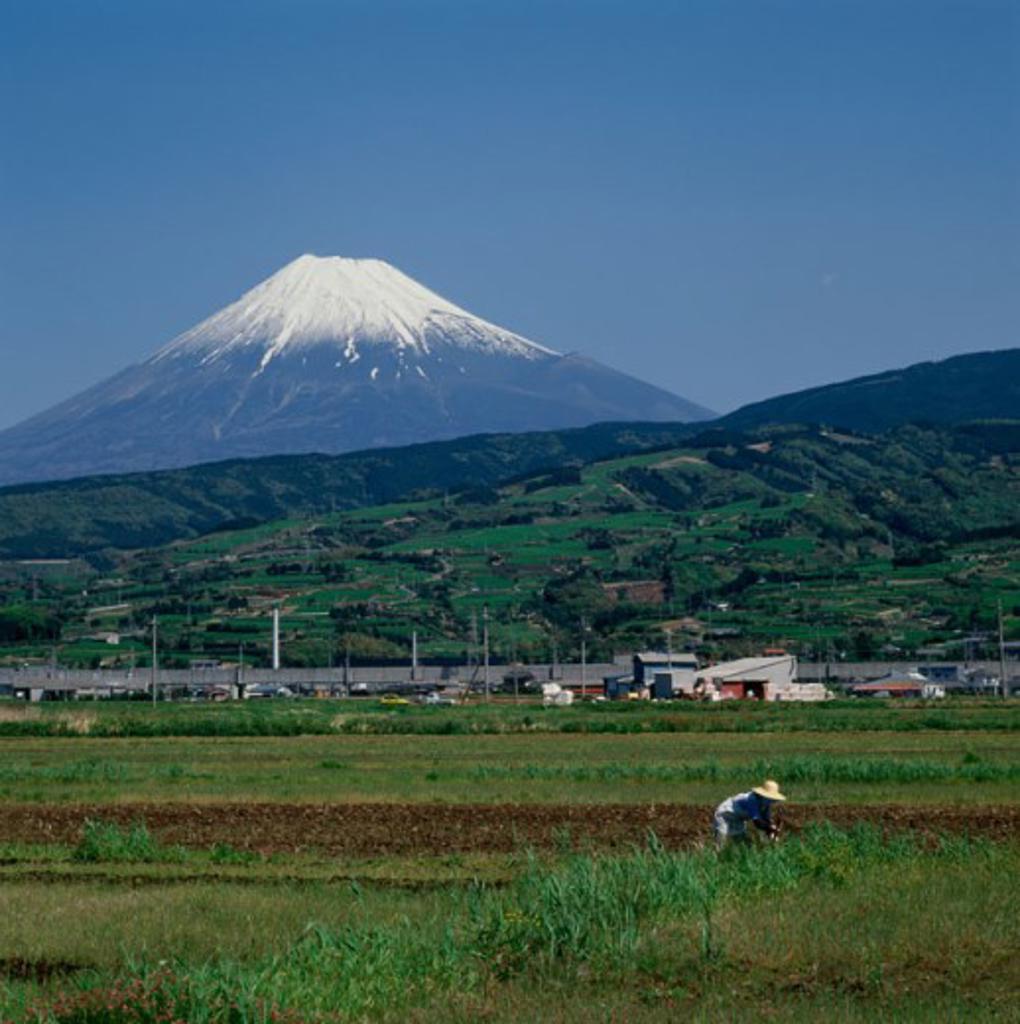 Mount Fuji Japan : Stock Photo