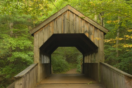 Stock Photo: 1596-1200 Covered bridge in a forest, Devils Hopyard State Park, East Haddam, Connecticut, USA