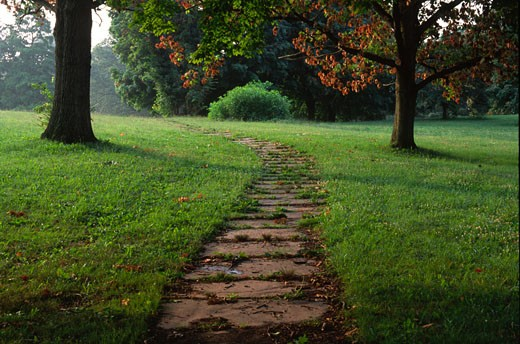 Slate walkway in a park, Druid Hill Park, Baltimore, Maryland, USA : Stock Photo