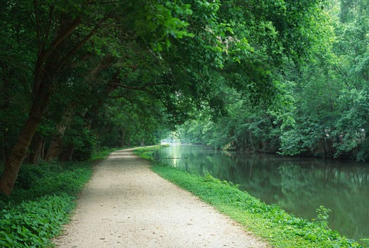 Stock Photo: 1596-1619 Dirt road along a canal, Chesapeake and Ohio Canal National Historical Park, Maryland, USA