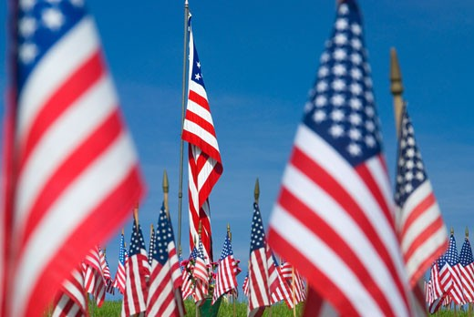 American flags in a cemetery, Willamette National Cemetery, Portland, Clackamas County, Oregon, USA : Stock Photo