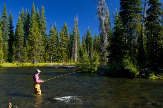 Stock Photo: 1596-1983 Woman fishing in a river, Mile Camp, Deschutes River, Deschutes National Forest, Oregon, USA
