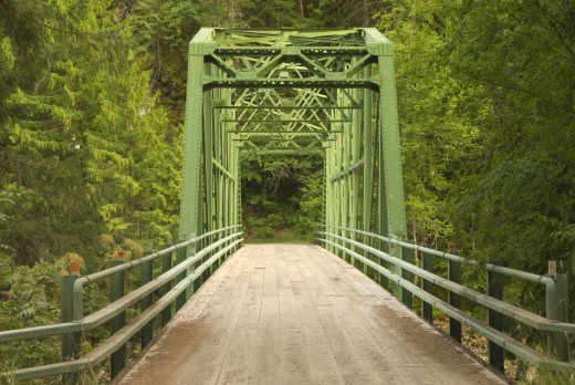 Stock Photo: 1596-2003A Bridge in a forest, Selway River, Nez Perce National Forest, Idaho, USA